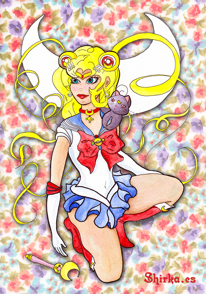 Sailor Moon Comission Fan Art shirka